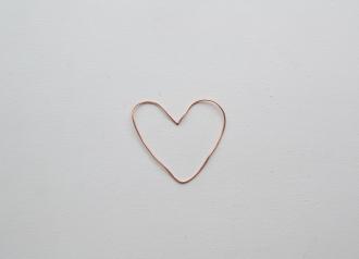 srce - žica